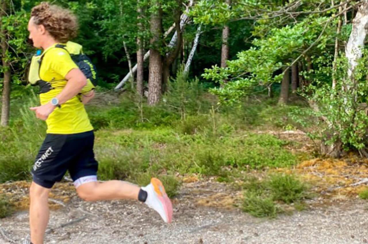 Lage Vuursche Trail - Trailrunkalender