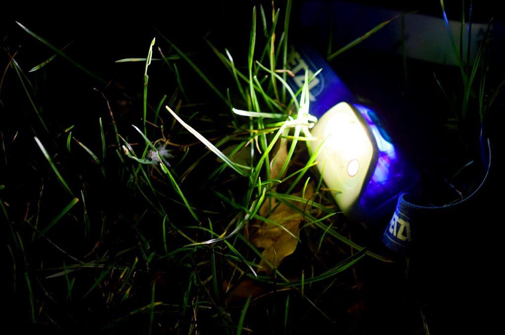 De Petzl Aktic hoofdlamp met wit licht