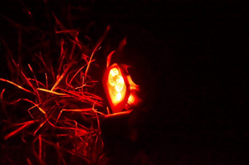 De Petzl Aktic hoofdlamp met rood licht