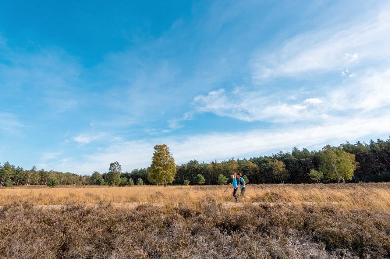 Posbank Trail 2020