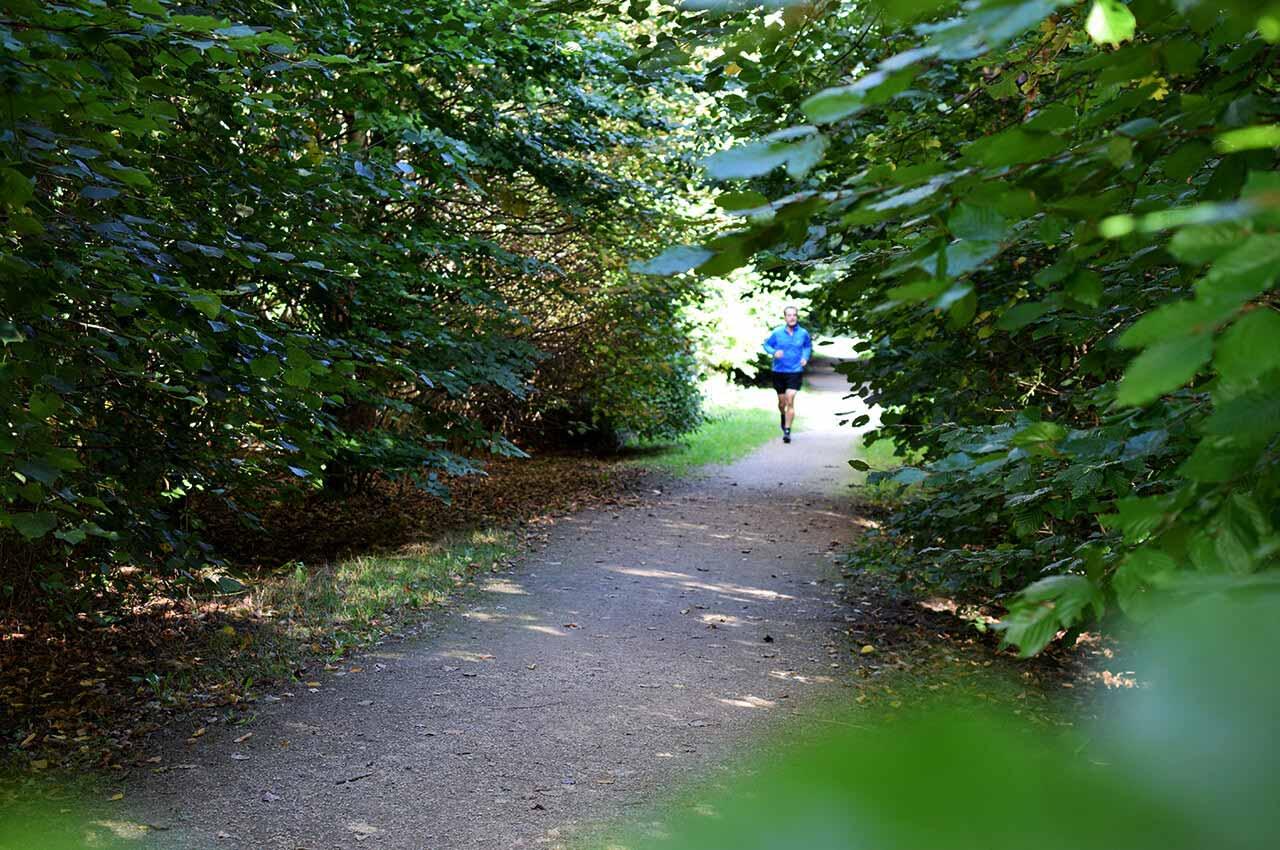 Aan het oefenen met trailrunning als beginnende trailrunner