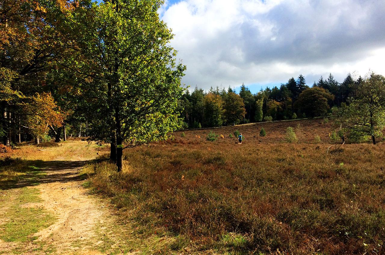 Stuk Devils Trail heide met herfstkleuren
