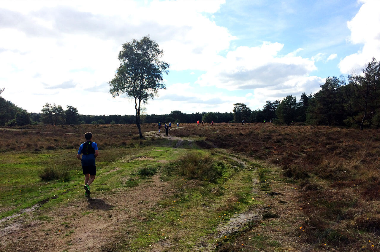 Heide onderdeel van het Devil's Trail parcours