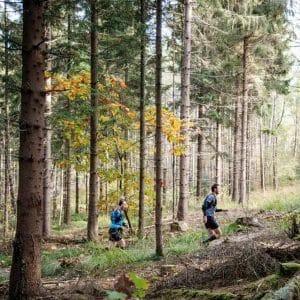 Devil's Trail Rijk van Nijmegen 2020