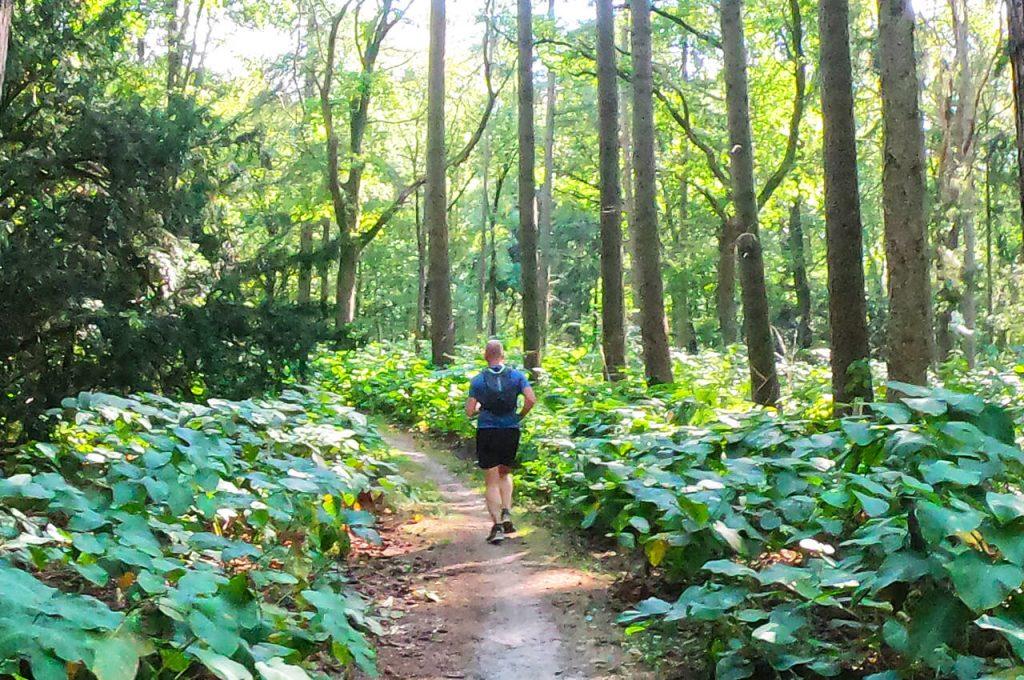 Hardlopen over de trails in Goirle bij de Belgische grens