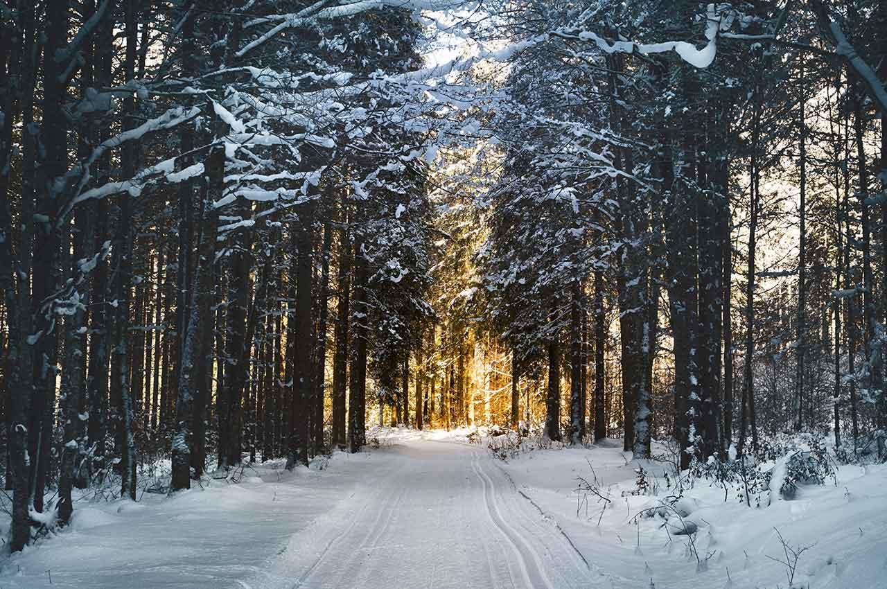 Hardlopen tijdens de feestdagen over besneeuwd pad