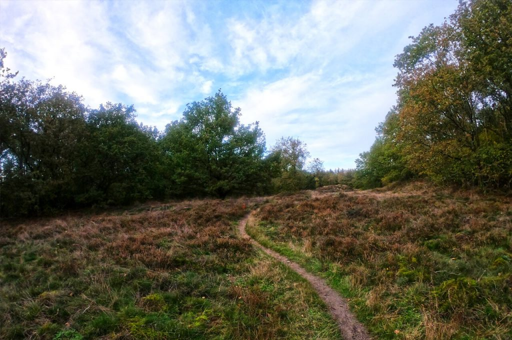 Trail tijdens de Indian Summer Ultra