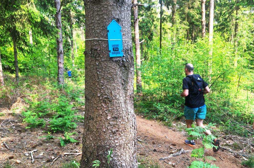 Met blauwe pijlen werd de route aangegeven van de trailrun-editie