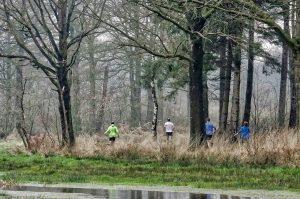 ooievaarstrail - Trailrunkalender Nederland