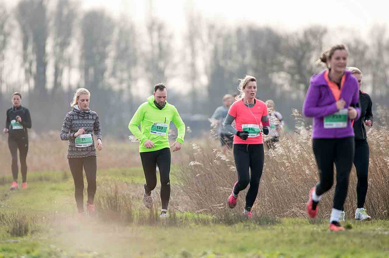 RUNFORESTRUN Besthemerberg 2020 trailrunkalender