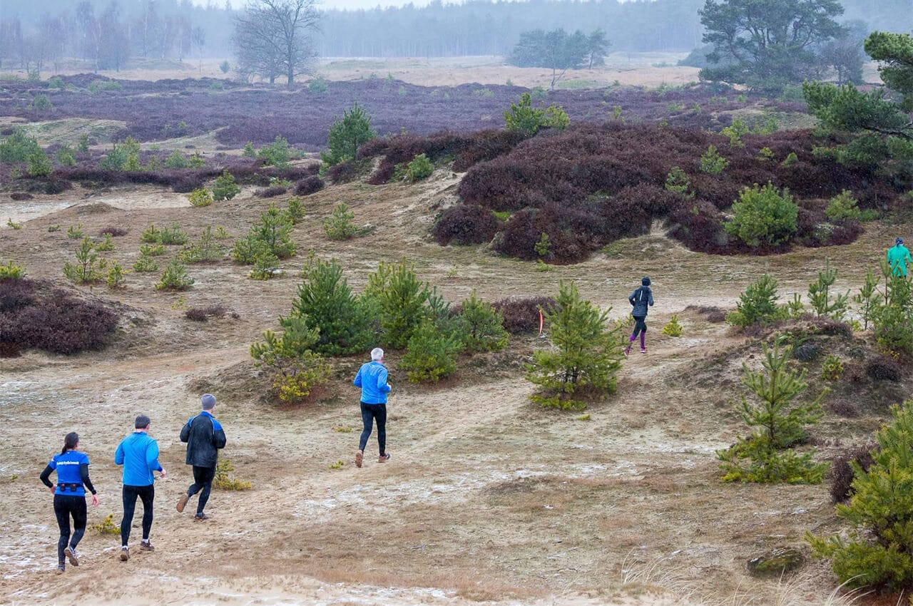 RUNFORESTRUN Drents Friese Wold