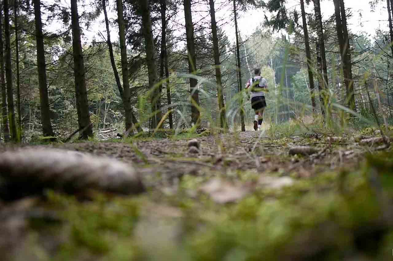 RUNFORESTRUN Gasselte 2020 Trailrunkalender