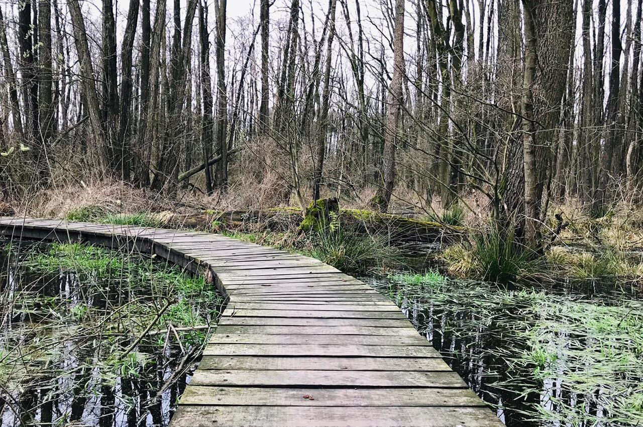 Schuitwater Trail - Trailrunning events