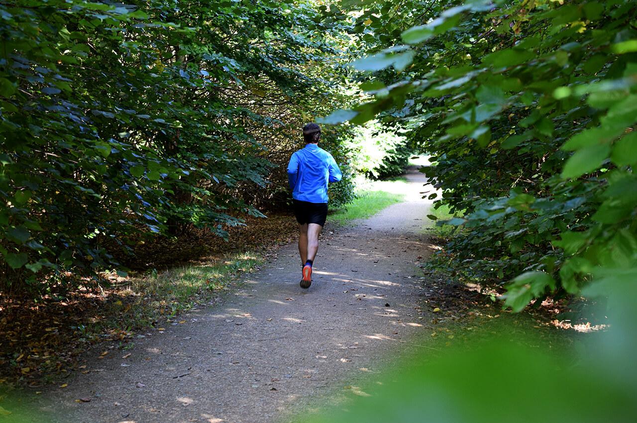Trailrunnen smaakt naar meer door het lopen tussen de bossen