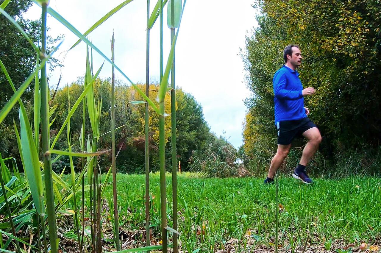 Trainen voor je eerste trailrun