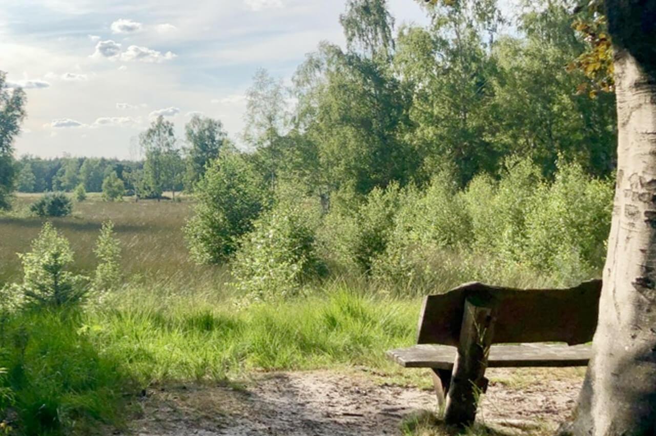 Utrechtse Heuvelrug Ultra Trail 100km (UHUT100)