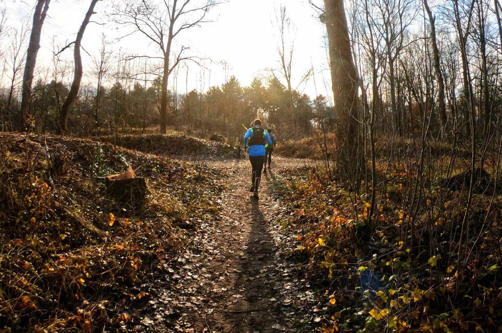 Door de bossen tijdens de Voorne's Duin Trail