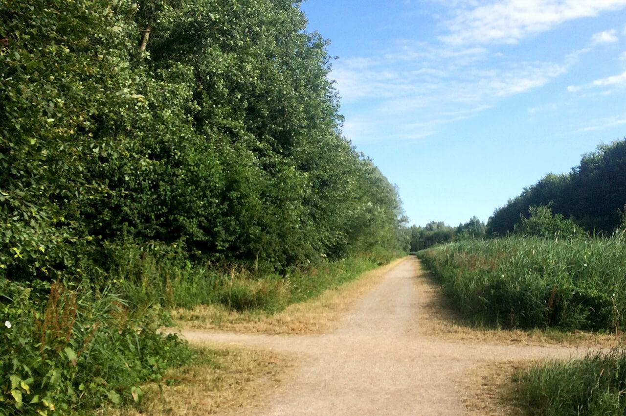 Stuk route van de Tom Optiekloop