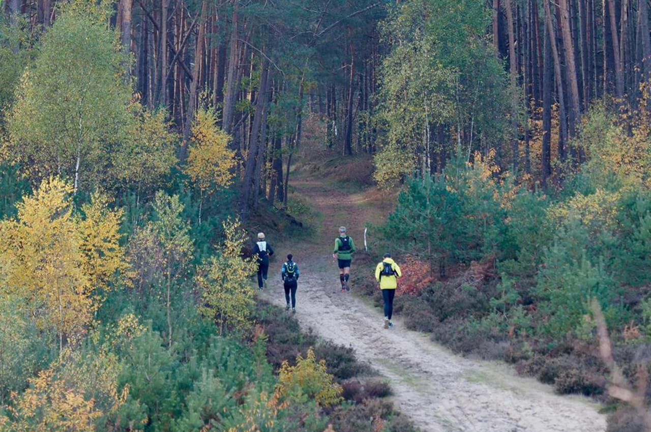 Zandenbos Trail - Trail kalender 2020